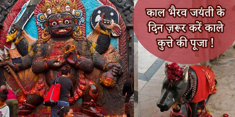 काल भैरव जयंती के दिन ज़रूर करें काले कुत्ते की पूजा !