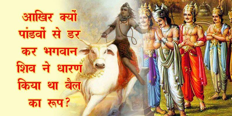 आखिर क्यों पांडवों से डर कर भगवान शिव ने धारण किया था बैल का रूप?